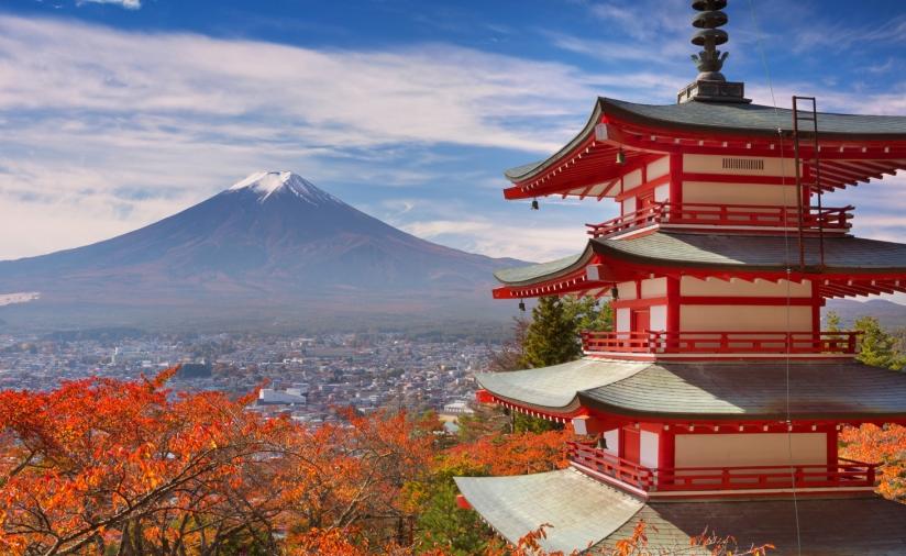 23o Παγκόσμιο Συνέδριο Αισθητικής Πλαστικής Χειρουργικής, Κιότο Ιαπωνίας 2016
